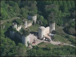 Un fleuron de la gastronomie française nous vient d'Echiré; où l'on trouve également ce château du XIII siècle, il s'agit ...