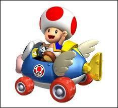 Je suis un petit homme en forme de champignon, je suis donc...