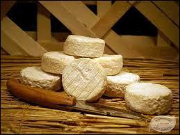 Fromage au lait de chèvre; de quelle région nous provient le pélardon ?