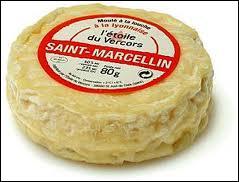 Quel roi de France serait (selon une légende) à l'origine de la promotion du St Marcellin ?