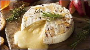 Encore 4 ! Super c'est une question ''CAMEMBERT'' ! ... Sciences et Nature : Le camembert est un fromage -----------------.
