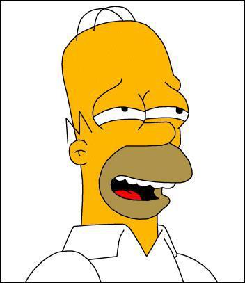 Quelle la phrase fétiche de Homer ?