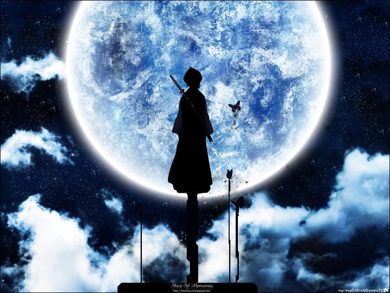 En quelle matière Rukia excellait-elle à l'académie des Shinigamis ?