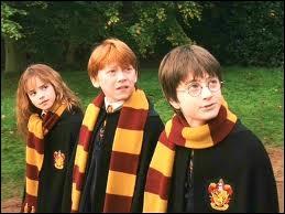 Comment s'appellent les deux meilleurs amis d'Hermione ?