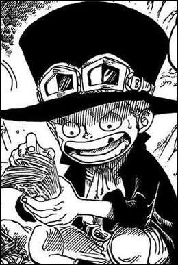 Quel est le nom du second frère de Luffy ?