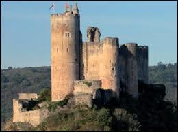 A quel siècle remonte la construction des premiers châteaux forts ?
