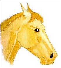 Un cheval qui a les oreilles en arrière, les naseaux pincés et qui montre le blanc de l'oeil est :