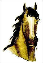 Un cheval qui a les oreilles en avant et l'encolure soutenue est :