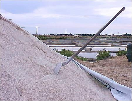 Combien de tonnes de sel et de fleur de sel sont produites sur les salines de l'île ?