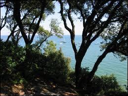 Quelle espèce de chêne trouve-t-on au Bois de la Chaize, au nord de l'île ?