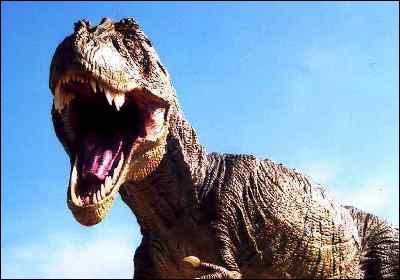 En quelle année le Tyrannosaurus rex a-t-il été découvert ?