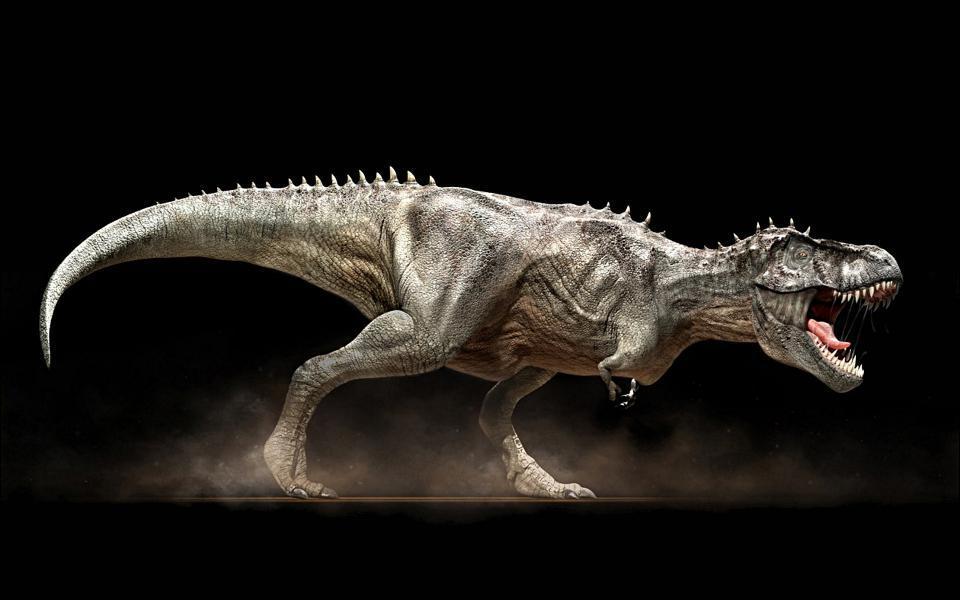 En quelle année le Tyrannosaurus rex a-t-il été décrit ?