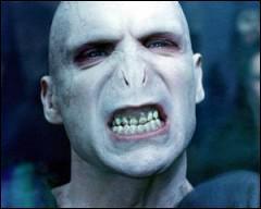 Comment s'appellent les serviteurs de Voldemort ?