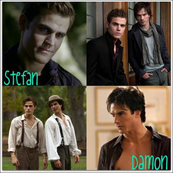Quel est le nom de famille de Stefan et Damon ?