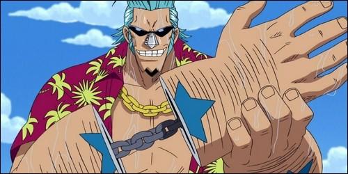 Comment s'appelle le bateau que Franky construit pour Luffy ?