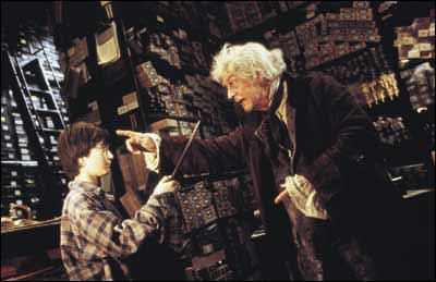 Comment s'appelle le magasin où Harry a acheté sa baguette ?
