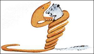 Comment appelle-t-on les serpents qui étouffent leurs proies en les serrant dans leurs anneaux ?