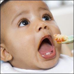 Les dents de bébé sont des :