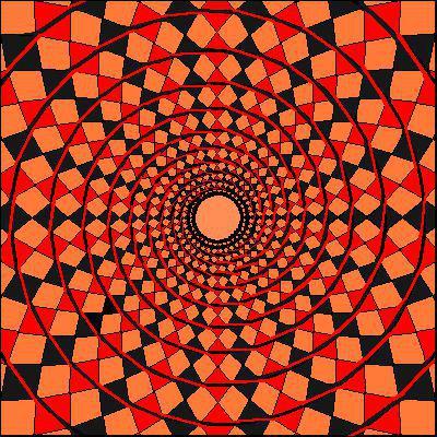 Que voyez-vous sur cette image ?