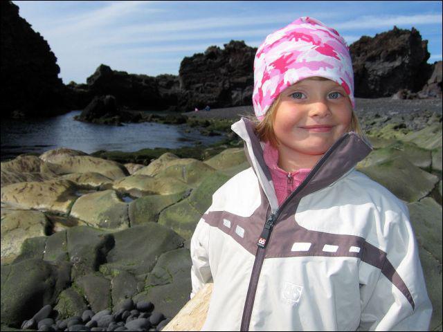 A quelle famille linguistique appartient l'islenska (islandais) ?
