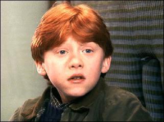 Ron n'aime pas entendre le nom de Voldemort.