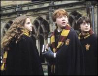 Harry, Hermione et Ron appartiennent à la maison des ...