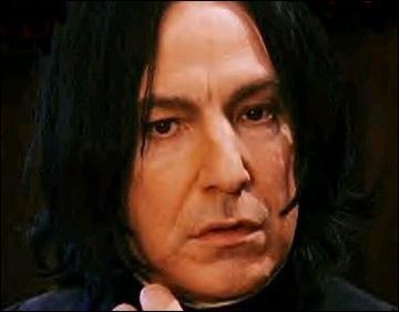 Qui est le professeur des potions qu'Harry déteste plus que tout ?