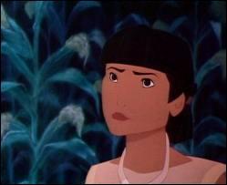 Qui est ce personnage de Pocahontas ?