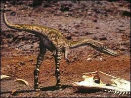 Quel est le plus ancien dinosaure découvert parmi cela ?