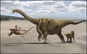 Lequel de ces dinosaures a été le plus récemment découvert ?