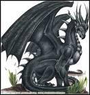 Qui a découvert toutes les propriétés du sang de dragon ?