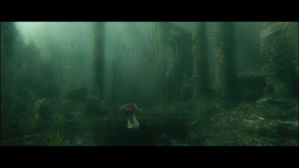 Que doit retrouver Harry au fond du lac ( d'une très grande importance) ?