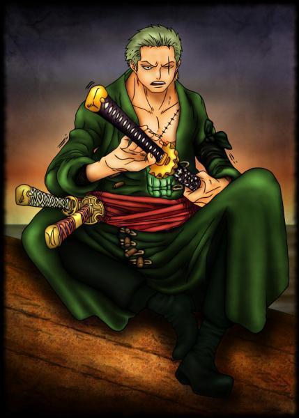 Quel est ce membre de l'équipage Mugiwara ?