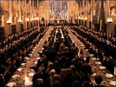 Quelle est la particularité du plafond de la grande salle ?