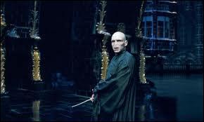 Quelle est la plus grande faiblesse de Lord Voldemort ?