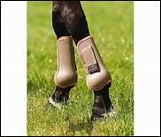 Qu'utilise-t-on pour protéger des chocs les membres d'un cheval ?