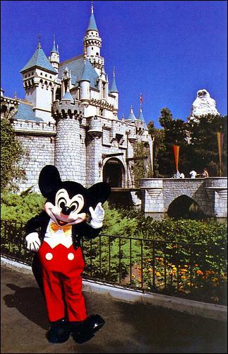 Où a été construit le premier parc Disney en 1955 ?