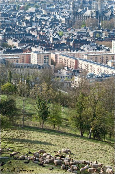 Quelle est la capitale régionale de la Haute Normandie ?