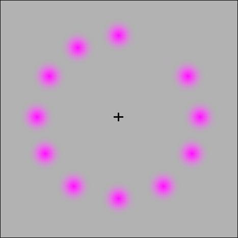 Regardez la croix au centre entre 20 et 30 secondes. Que se passe-t-il ?