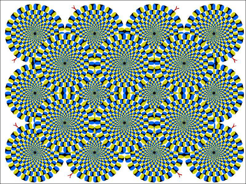Que font les cercles ?