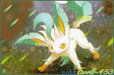Phyllali est un Pokémon de quel type ?
