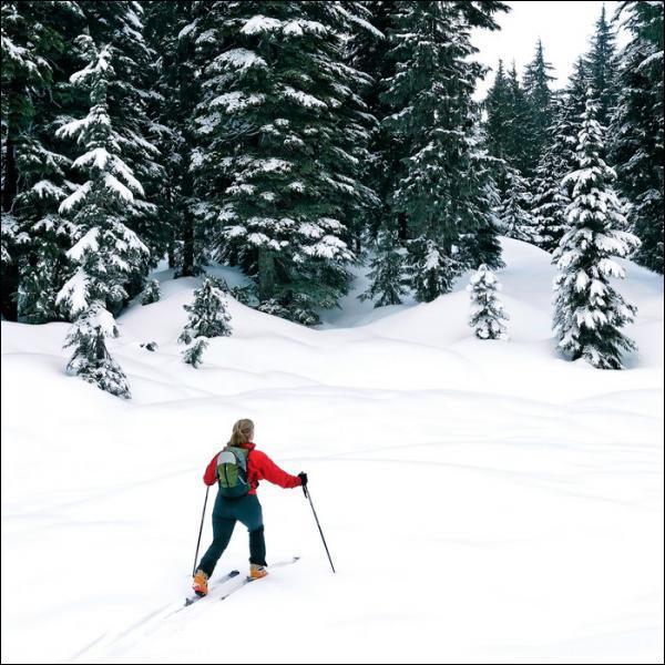Y a-t-il des stations de ski en Auvergne ?