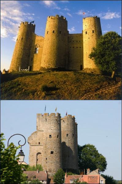 Quelle grande famille de France a pour berceau historique l'actuel département de l'Allier, en Auvergne ?