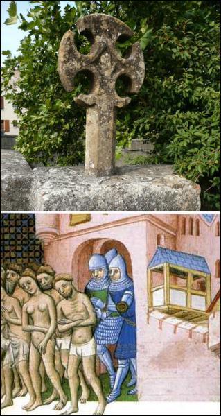Quelle hérésie du Moyen-Age s'était établie dans des villes du Tarn, comme Foix et Albi ?