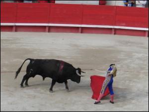 Quel est ce spectacle espagnol ou le torrero attire le taureau gràce à une cape rouge ?