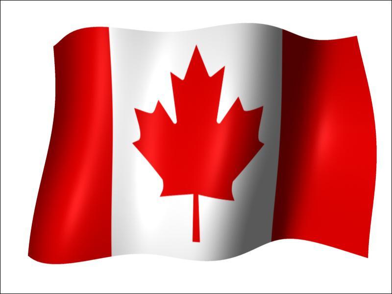 Quelle feuille est représentée sur le drapeau du Canada ?