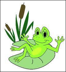Quelle est la durée de vie d'une grenouille ?