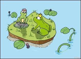 Comment se nomme le petit de la grenouille ?