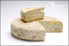 Quelle ville dauphinoise a donné son nom à ce fromage ?