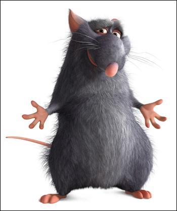 Père du petit rat de la question 10.